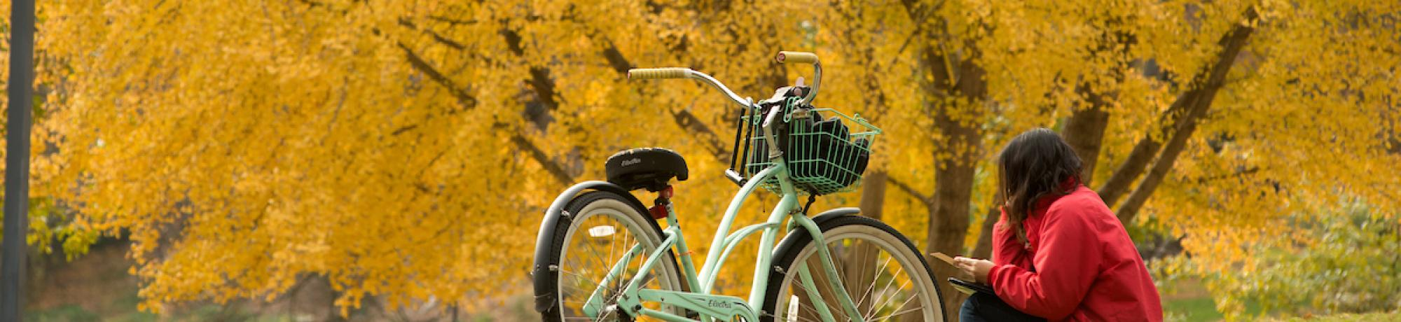 Bike with fall foliage